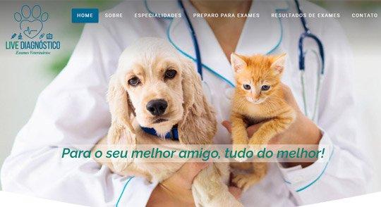 criacao-de-sites-profissional-live-diagnostico