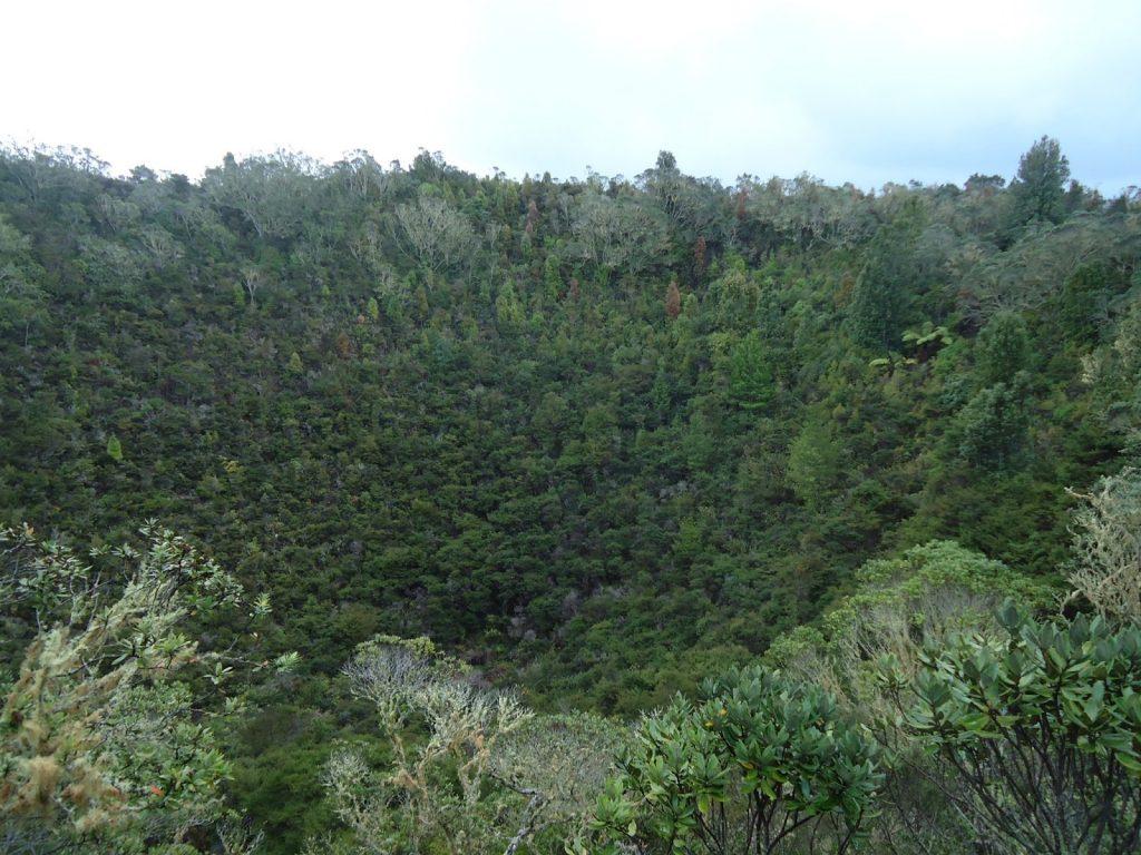 Escalando-o-vulcão-Rangitoto-na-chuva