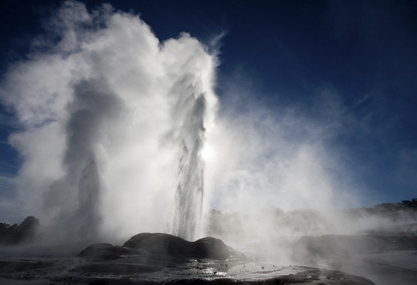 Te Puia o vale geotermal de Rotorua pohutu geyser
