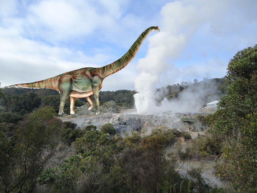 te puia rotorua nova zelandia geyser (1)
