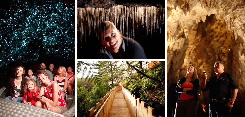 waitomo caves cavernas