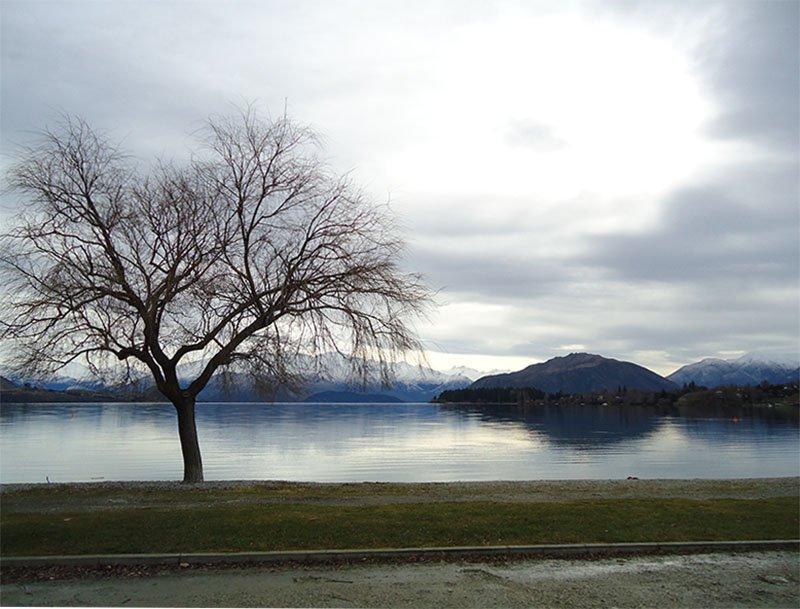 Rota Wanaka Lake Pukaki lago