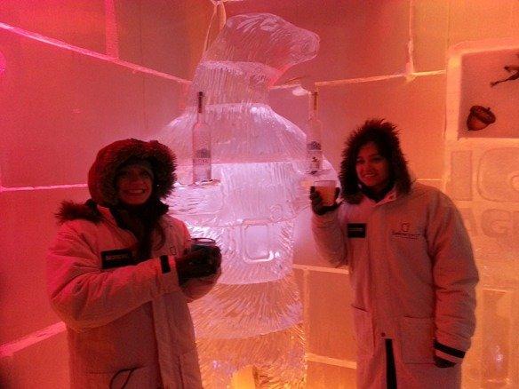 bar-de-gelo-em-queenstown-below-zero-ice-bar-urso-de-gelo