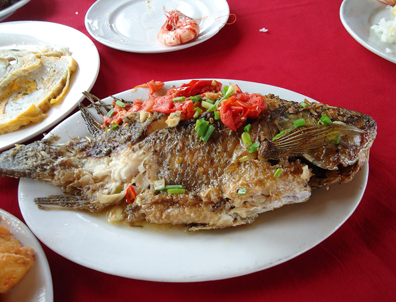 almoço ast travel halong bay