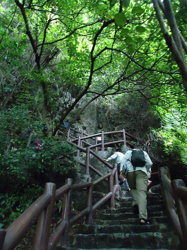 halong bay escadas caverna