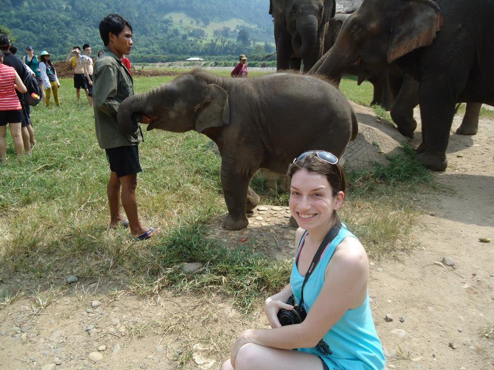 parque elefante tailandia chiang mai (2)