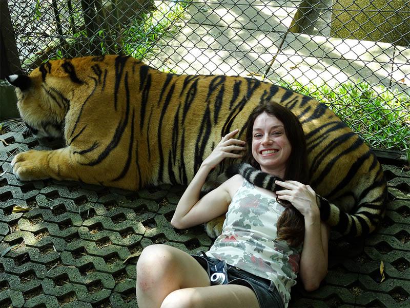 quanto custa o tiger kingdom tailandia