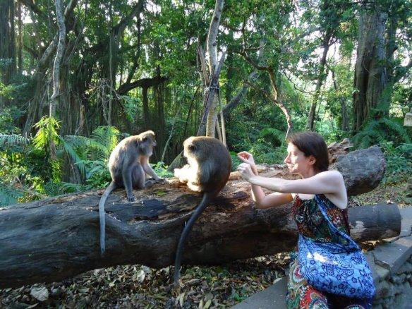 ataque macacos em bali ubud