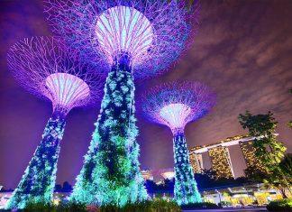 atracoes gratis em cingapura gardens by the bay