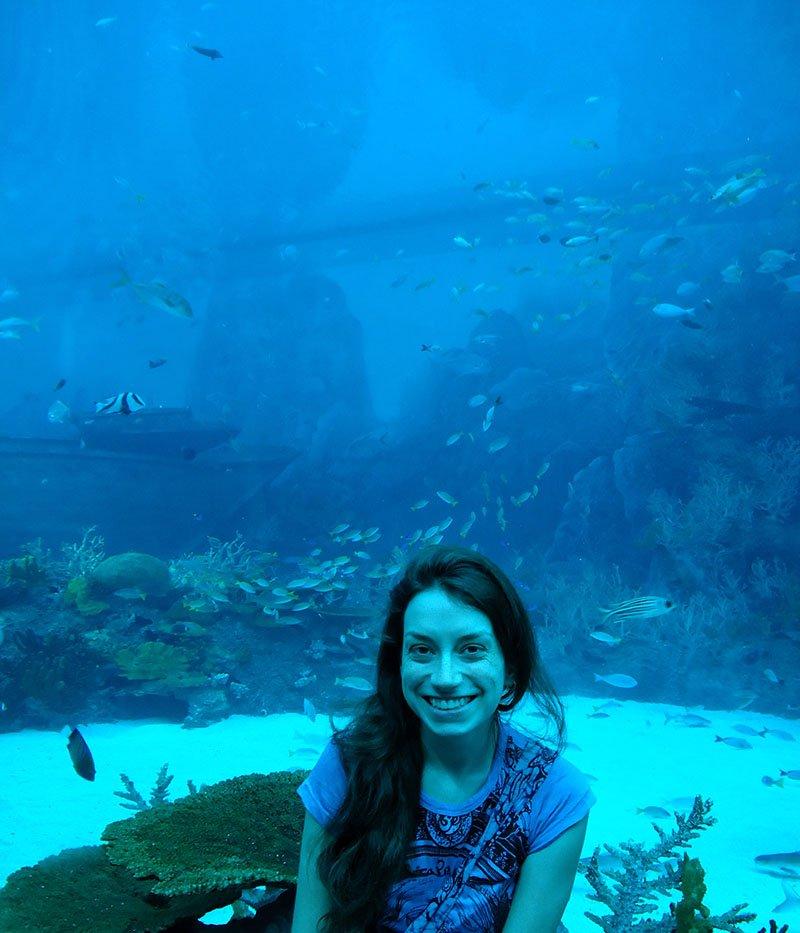 oceanario de cingapura aquario