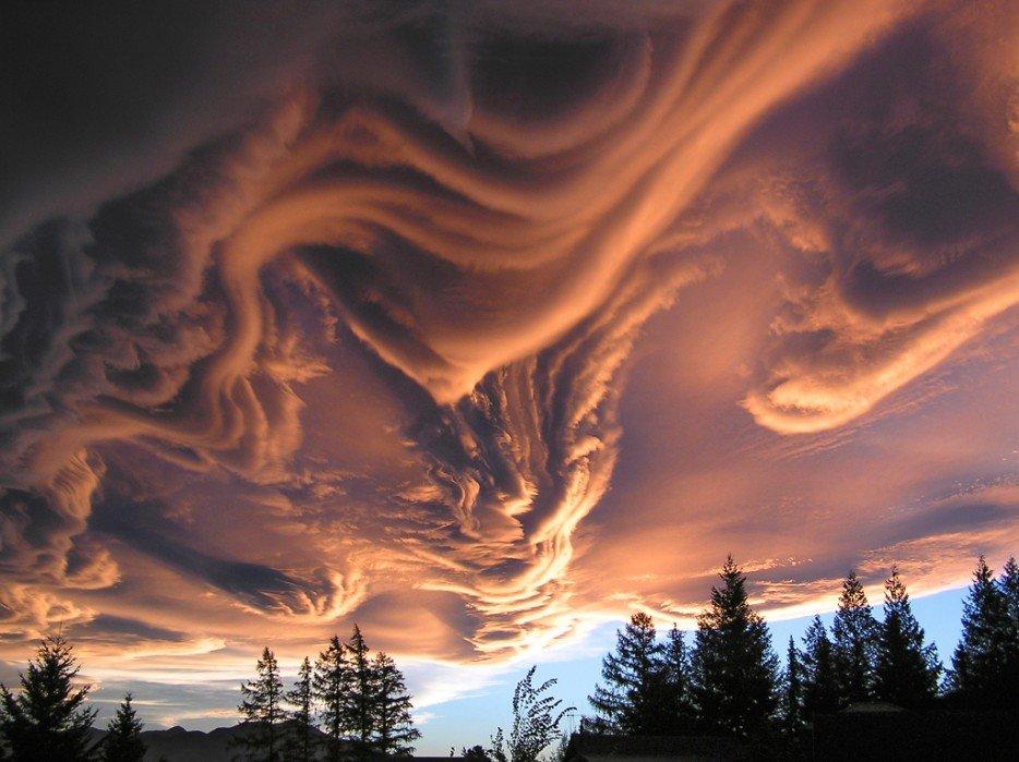 20 20 fenômenos espetaculares da natureza que você não vai acreditar que existem asperatus