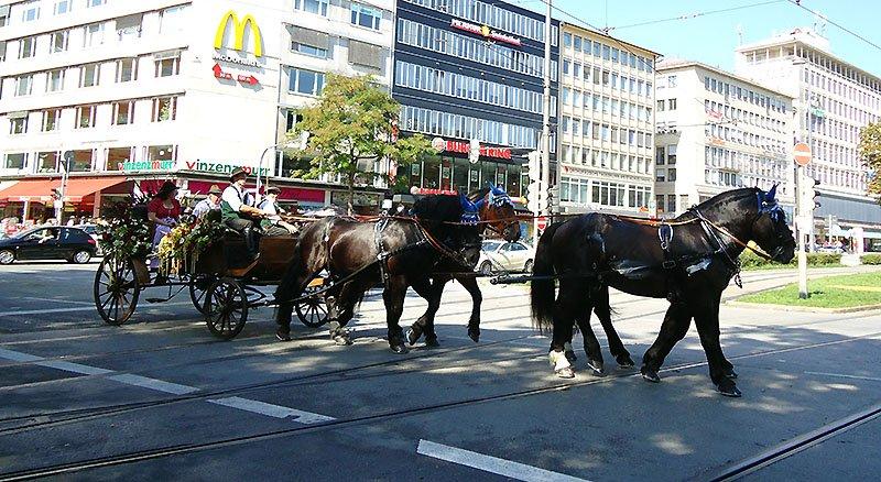Tudo o que você precisa saber sobre a Oktoberfest desfile cavalos