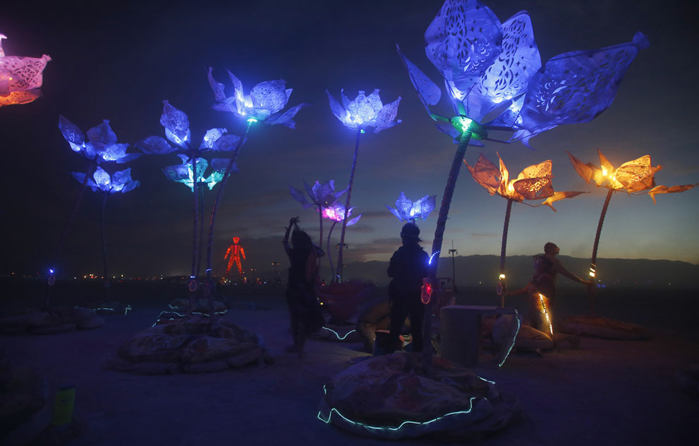 burning man pulse and bloom