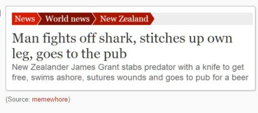 fatos bizarros da Nova Zelândia ataque tubarao