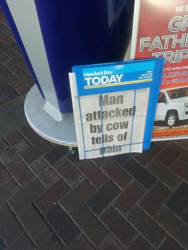 fatos bizarros da Nova Zelândia jornais 5