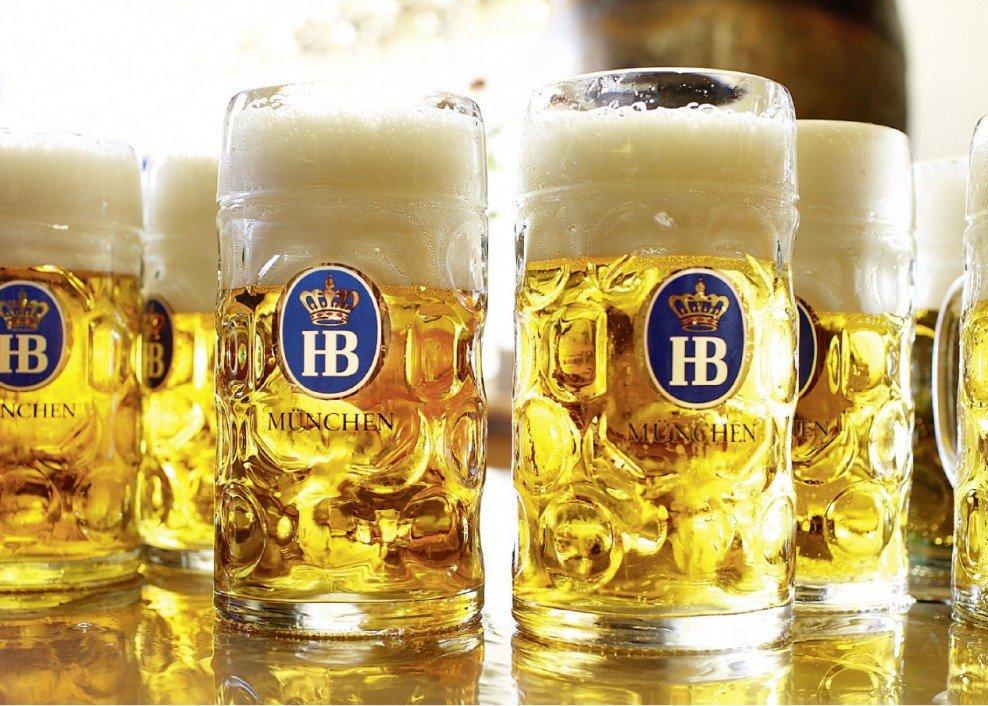 guia visual o que tomar na oktoberfest cervejas Hofbräu's Märzen