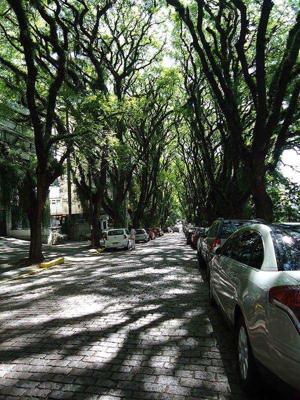 A rua mais bonita do mundo fica em Porto Alegre (1)