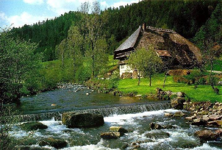 schwarzwald friends 20 lugares surreais que você não vai acreditar que existem