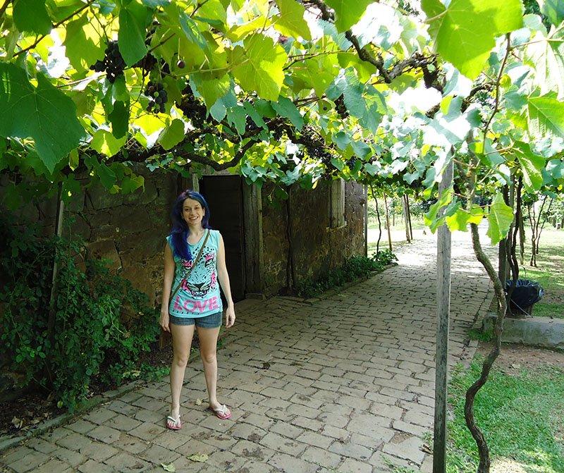 Rota Caminhos de Pedra em Bento Gonçalves cantina strapazzon 2
