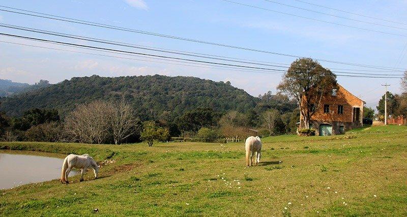 rota caminhos de pedra em bento gonçalves cavalinhos