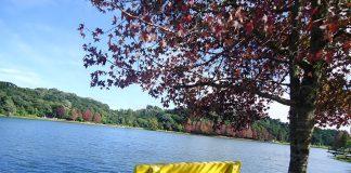 banco amarelo na frente do lago em são francisco de paula