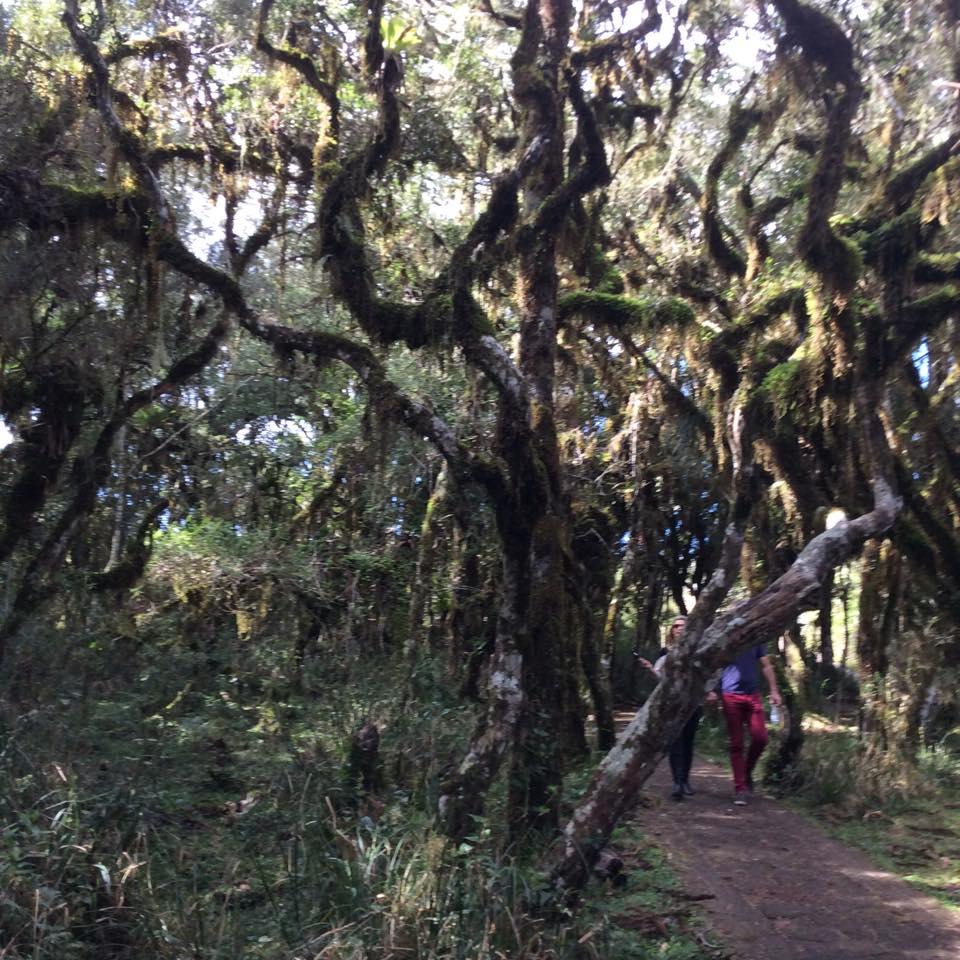 Cânion-Itaimbezinho-trilha-do-vértice-rio