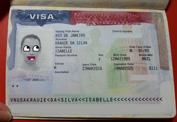 VIVA VISA! Como tirar o visto americano exemplo