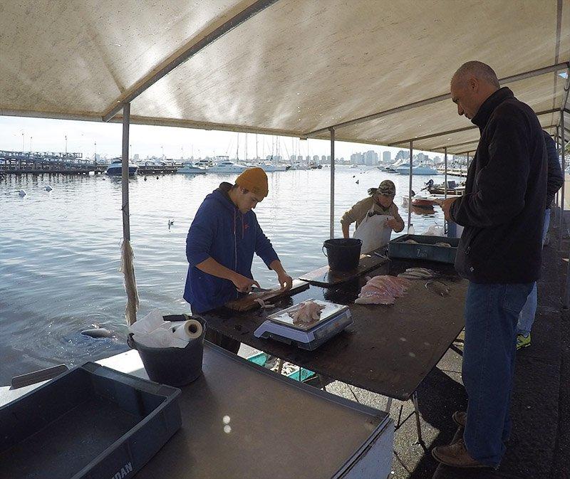pescadores vendendo peixe no porto de punta del este uruguai
