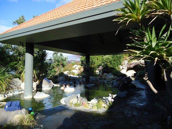 Polynesian Spa em Rotorua (5)