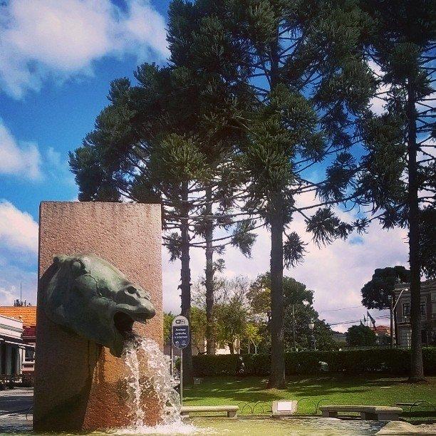 Cavalo Babão de Curitiba