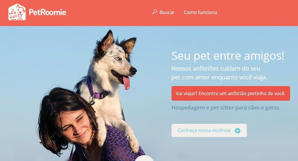 pet-roomie-animal-sozinho-em-casa