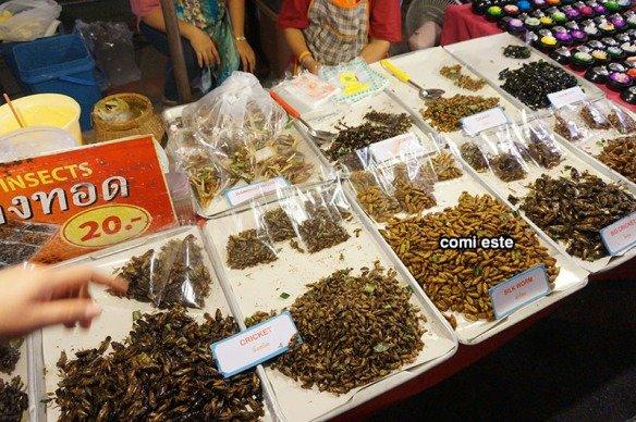 bangkok-guia-imperdivel-insetos-fritos
