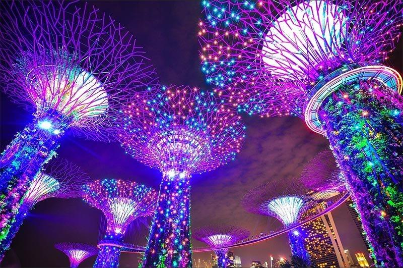 roteiro em cingapura o que ver na cidade gardens by the bay