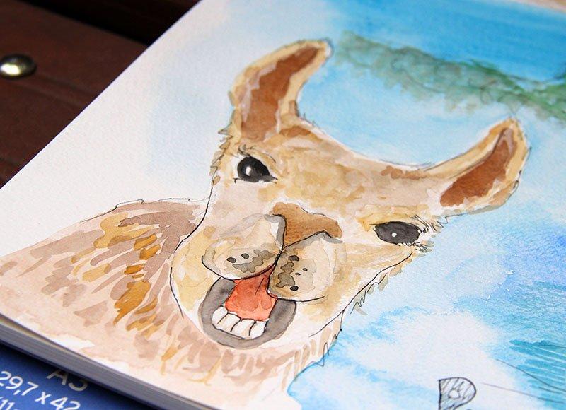 cartão-postal-peru-aquarela-lhama