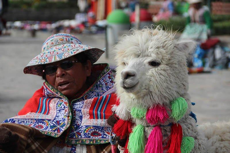 Canion del Colca imperdível peru yanque alpaca