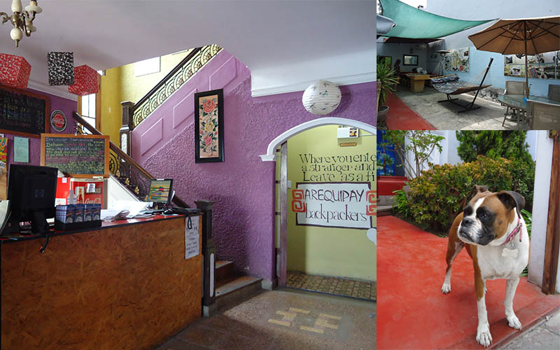 4 hostels no peru arequipay backpackers