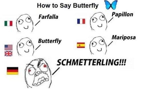 dicas para aprender alemao borboleta