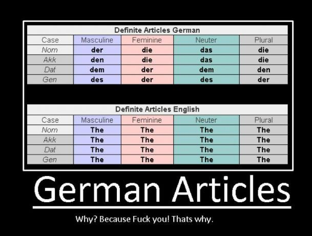 german-articles-because-fuck-you-thats-why