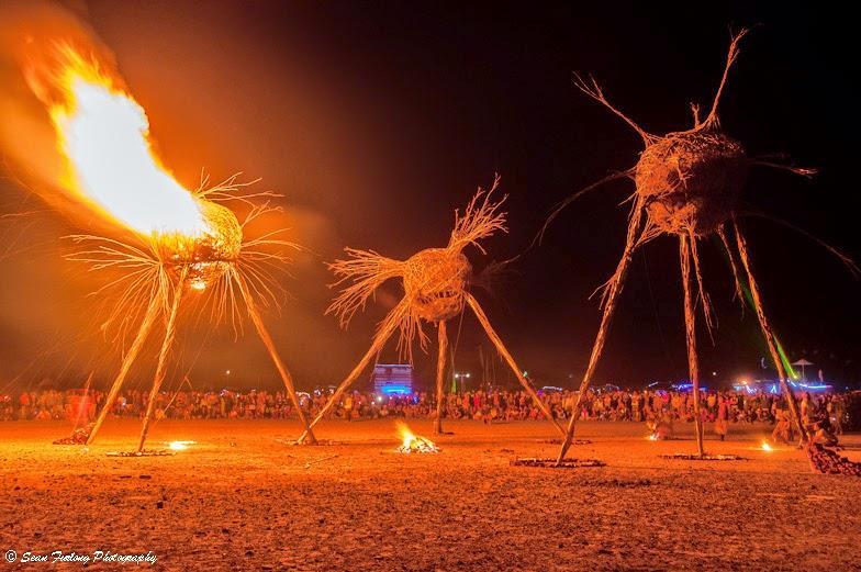5 festivais alucinantes ao redor do mundo Afrikaburn Sean Furlong (2)