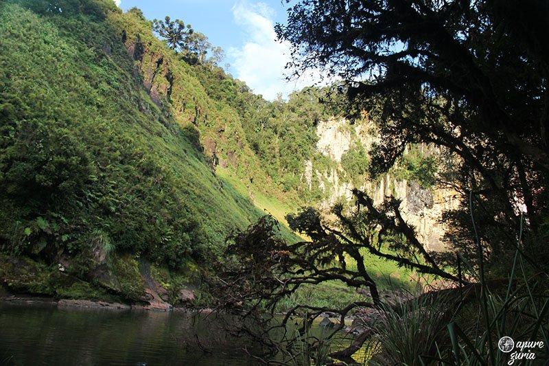 Cachoeira Rio dos Pardos arvore