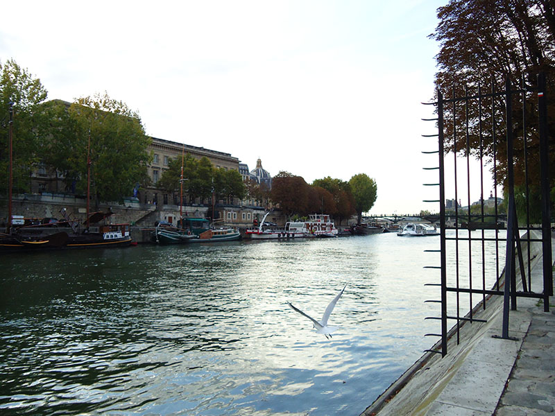 Paris graça passeios rio sena