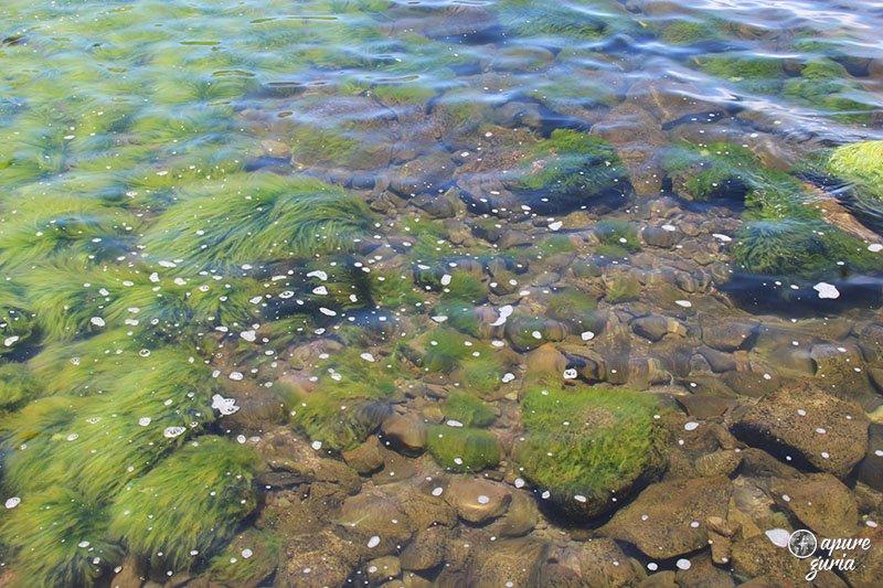 titicaca cor da agua