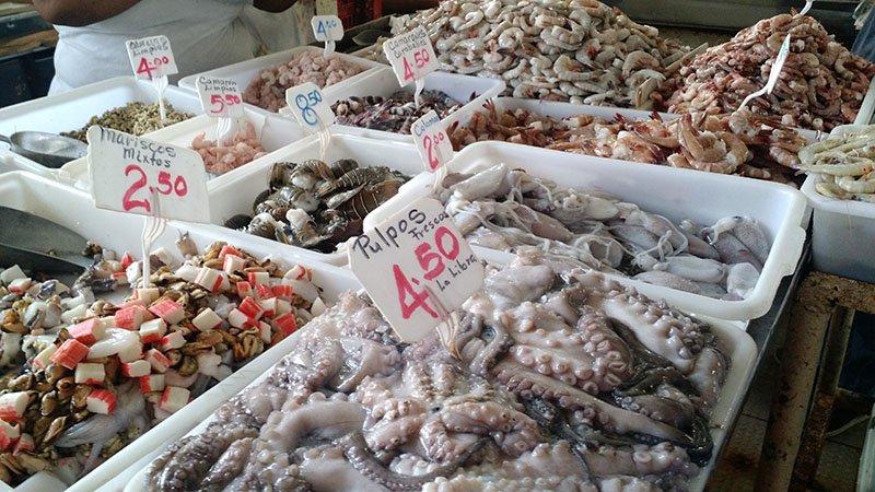 mercado de peixes no panama polvo