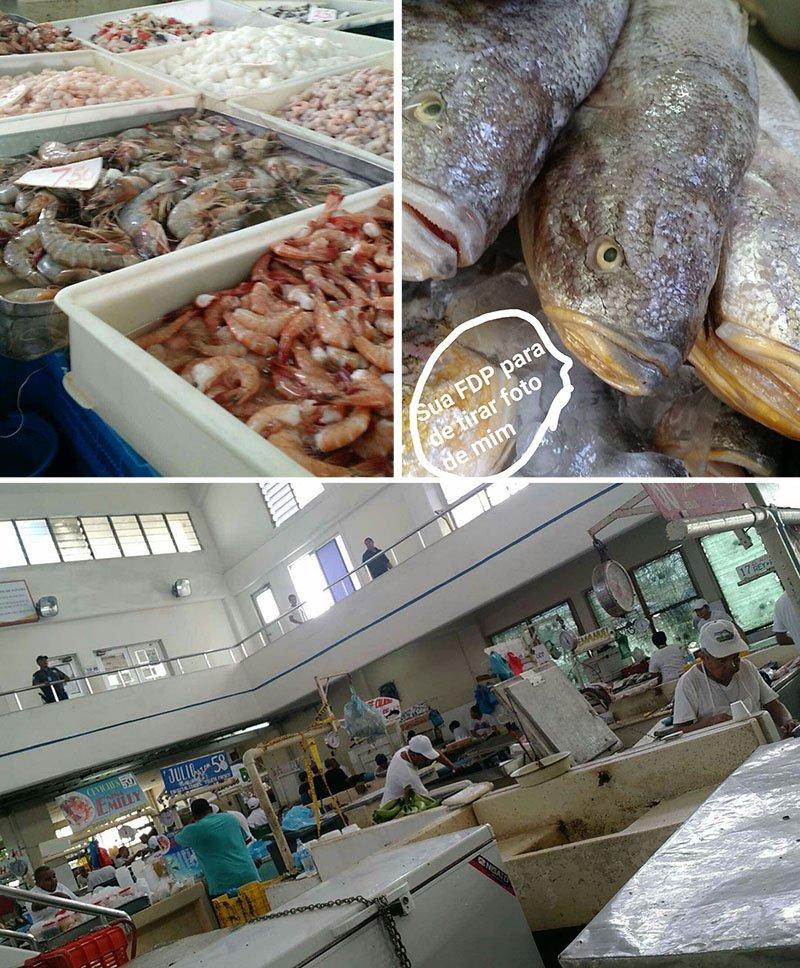 mercado de peixes panama