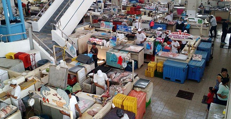 mercado del marisco panama
