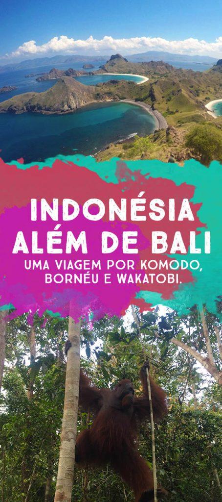 indonesia-alem-de-bali-dicas-de-viagem-borneu-komodo