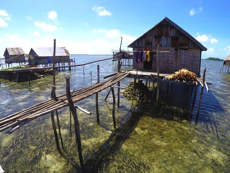 tribo-wakatobi-bajo