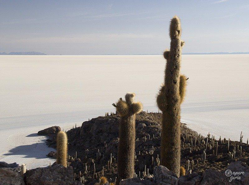 dicas de viagem salar de uyuni bolivia