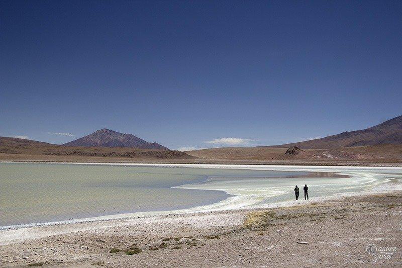 laguna hedionda verde uyuni bolivia