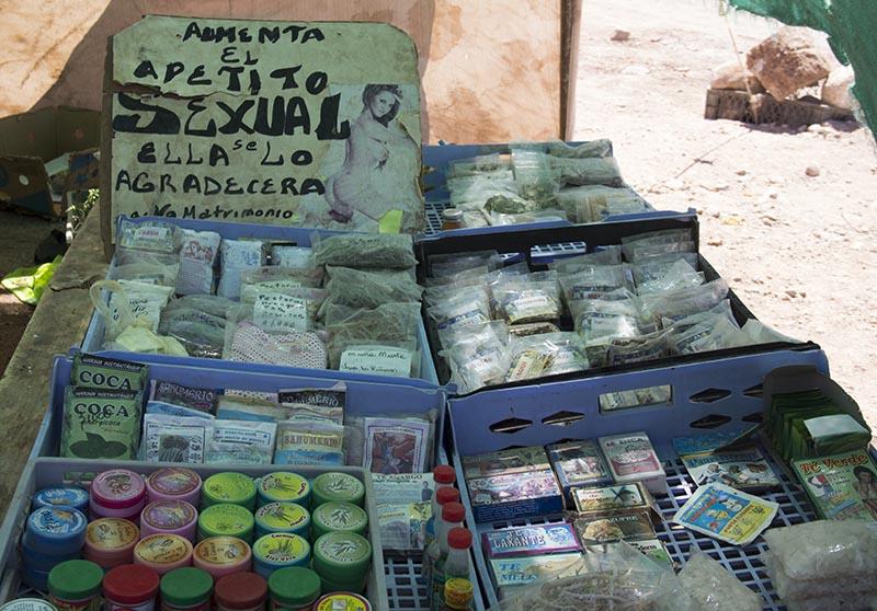 plantas-medicinais-sexuais-atacama-mapuche